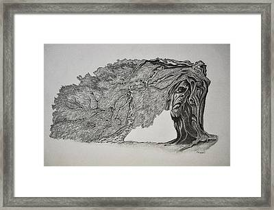 Tree With Faces Framed Print by Glenn Calloway