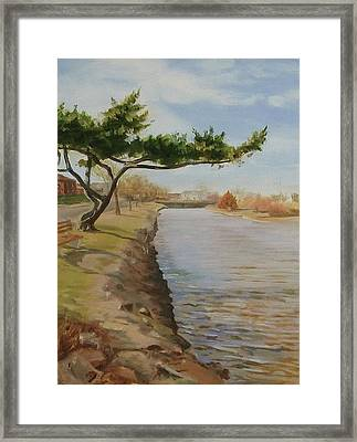 Tree With Lake Framed Print