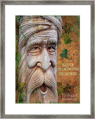 Treebeard Framed Print by Gillian Singleton