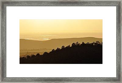 Framed Print featuring the photograph Treeline by AJ  Schibig