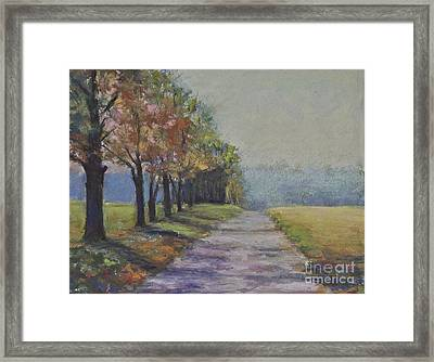 Treelined Road Framed Print by Joyce A Guariglia