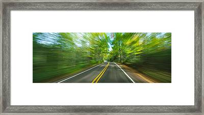 Treelined Road Viewed From A Moving Framed Print by Panoramic Images