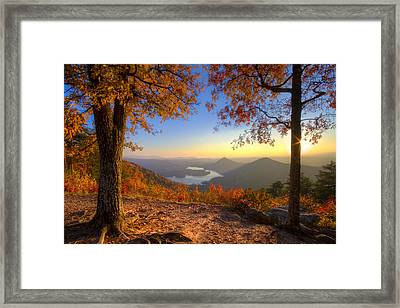 Trees Aflame Framed Print by Debra and Dave Vanderlaan