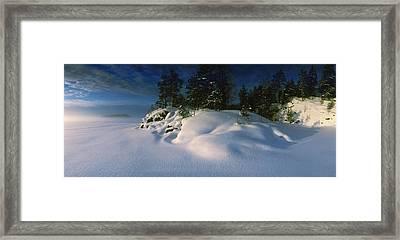 Trees Along A Frozen Lake, Saimaa Framed Print