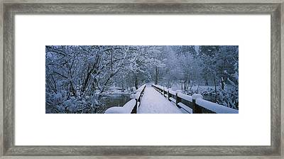 Trees Along A Snow Covered Footbridge Framed Print by Panoramic Images