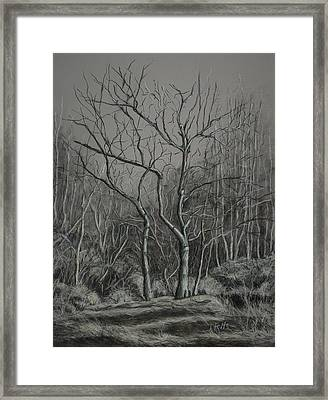 Trees Along The Greenway Framed Print by Janet Felts
