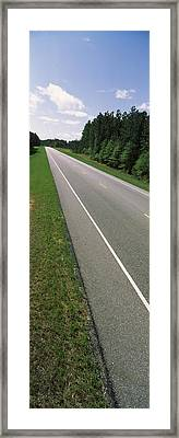 Trees Along The Road, Alabama State Framed Print by Panoramic Images