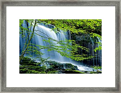 Trees And Falls Framed Print by Paul W Faust -  Impressions of Light
