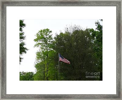 Trees And Flag Framed Print by Joseph Baril