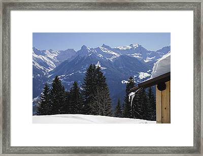 Trees And Mountains In Winter Framed Print