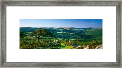 Trees And Plants On A Landscape Framed Print by Panoramic Images