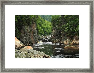 Trees And Water Framed Print by Jason Lees