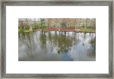 Framed Print featuring the photograph Trees And Water by Ron Davidson