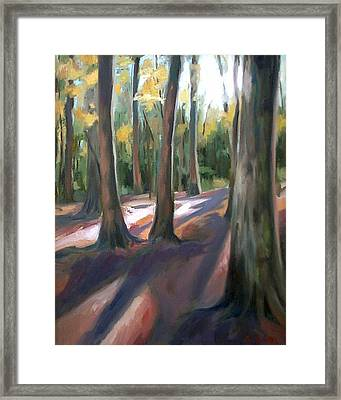 Trees At Glenrock Branch Framed Print by Erin Rickelton