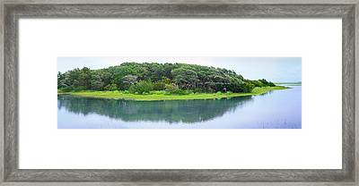 Trees At Rachel Carson Coastal Nature Framed Print by Panoramic Images