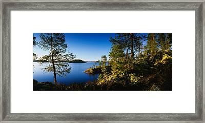 Trees At The Lakeside, Lake Saimaa Framed Print