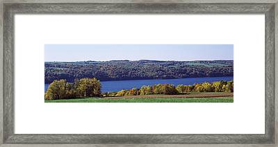 Trees At The Lakeside, Owasco Lake Framed Print by Panoramic Images