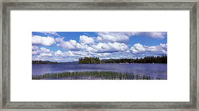 Trees At The Lakeside, Raquette Lake Framed Print