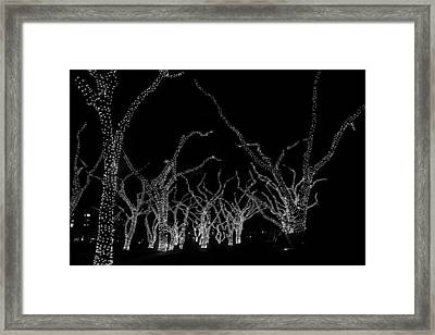 Framed Print featuring the photograph Trees Bejeweled II by Jim Snyder