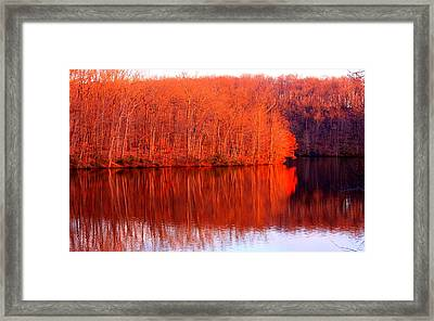 Trees By River Framed Print by Jose Lopez