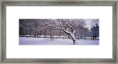 Trees Covered With Snow In A Park Framed Print by Panoramic Images