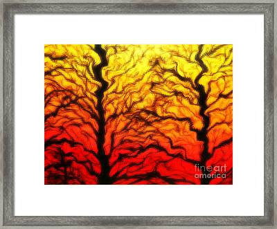 Trees Dancing At Sunset Framed Print by Lorraine Heath