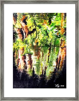 Trees Framed Print by Daniel Janda