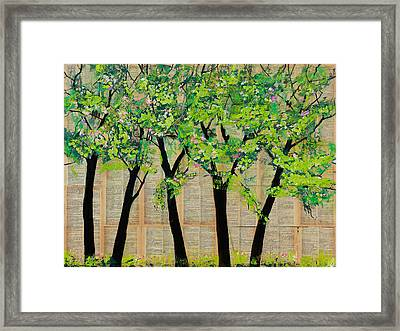 Trees In A Row Framed Print