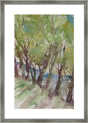 Trees In A Row Framed Print by Robin Miller-Bookhout