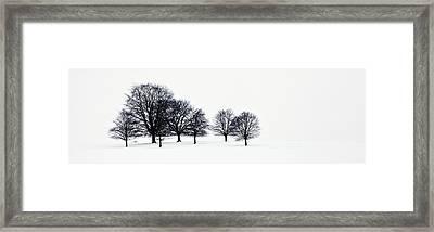Trees In A Snowy Field In Chatsworth Framed Print by John Doornkamp