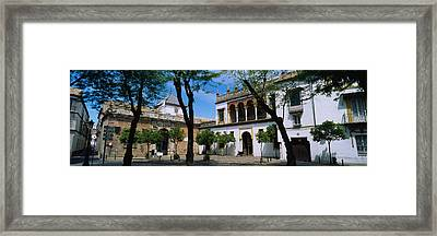 Trees In Front Of Buildings, Convento Framed Print by Panoramic Images