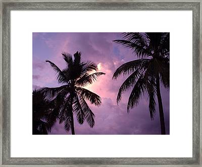 Trees In Silhouette Framed Print by Marianne Miles