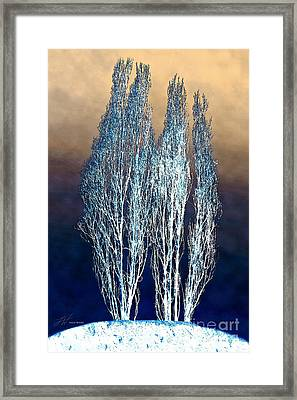 Trees In Snow Framed Print