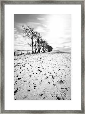 Trees In Snow Scotland II Framed Print by John Farnan