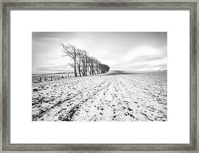 Trees In Snow Scotland V Framed Print by John Farnan