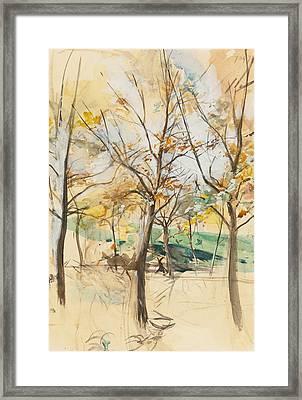 Trees In The Bois De Boulogne Framed Print