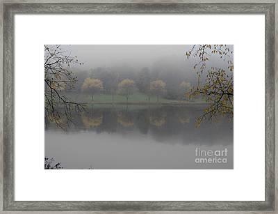 Trees In The Fog Framed Print by Stephanie Emond