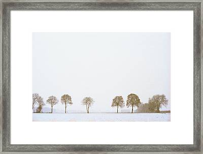 Trees In The Ladscape Framed Print by Marcio Faustino