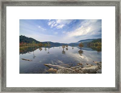 Trees In The Lake Framed Print by Debra and Dave Vanderlaan