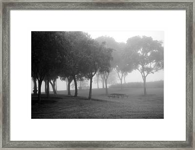Trees In The Midst 3 Framed Print