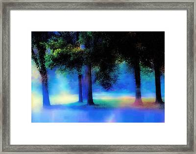 Trees In The Mist Framed Print by Barbara D Richards