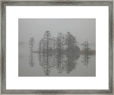 Trees In The Mist  Framed Print by Claude McCoy