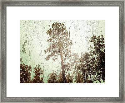 Water Of Life Framed Print by Colin and Linda McKie
