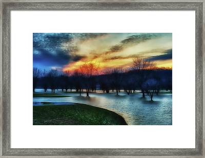 Trees In Water On Flooded Golf Course Framed Print by Rona Schwarz