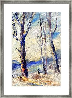 Trees In Winter Framed Print