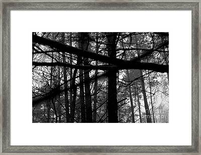 Framed Print featuring the photograph How Many Triangles Can You See? by Maja Sokolowska