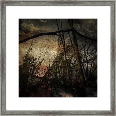 Trees No. 5 Framed Print