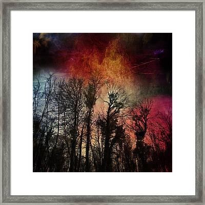Trees No.7  Framed Print