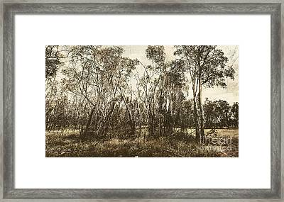 Trees Of Ashburn Framed Print by Jorgo Photography - Wall Art Gallery