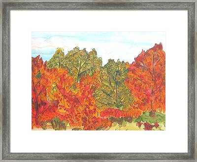 Trees Of Fall Framed Print